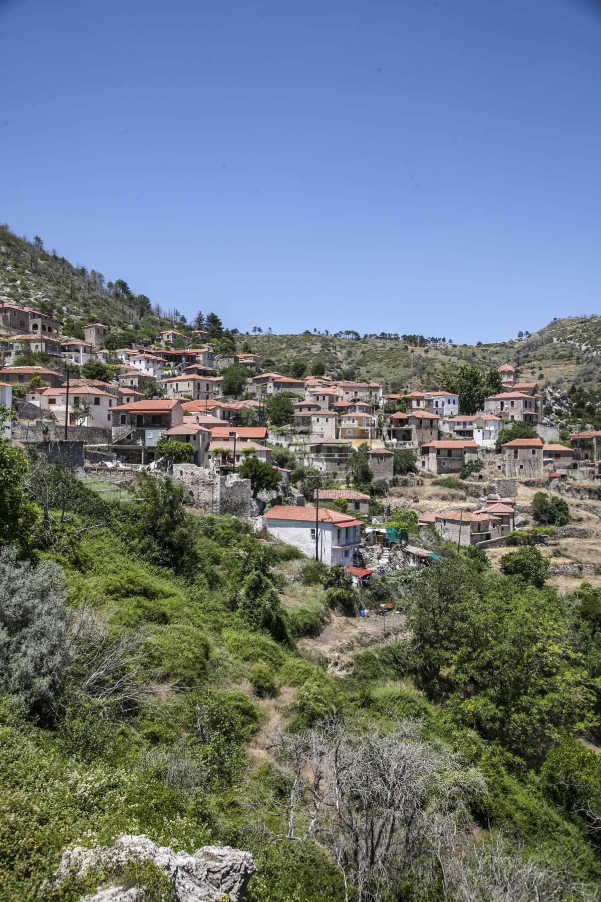 Αγριανοί Λακωνίας, γενική άποψη του χωριού
