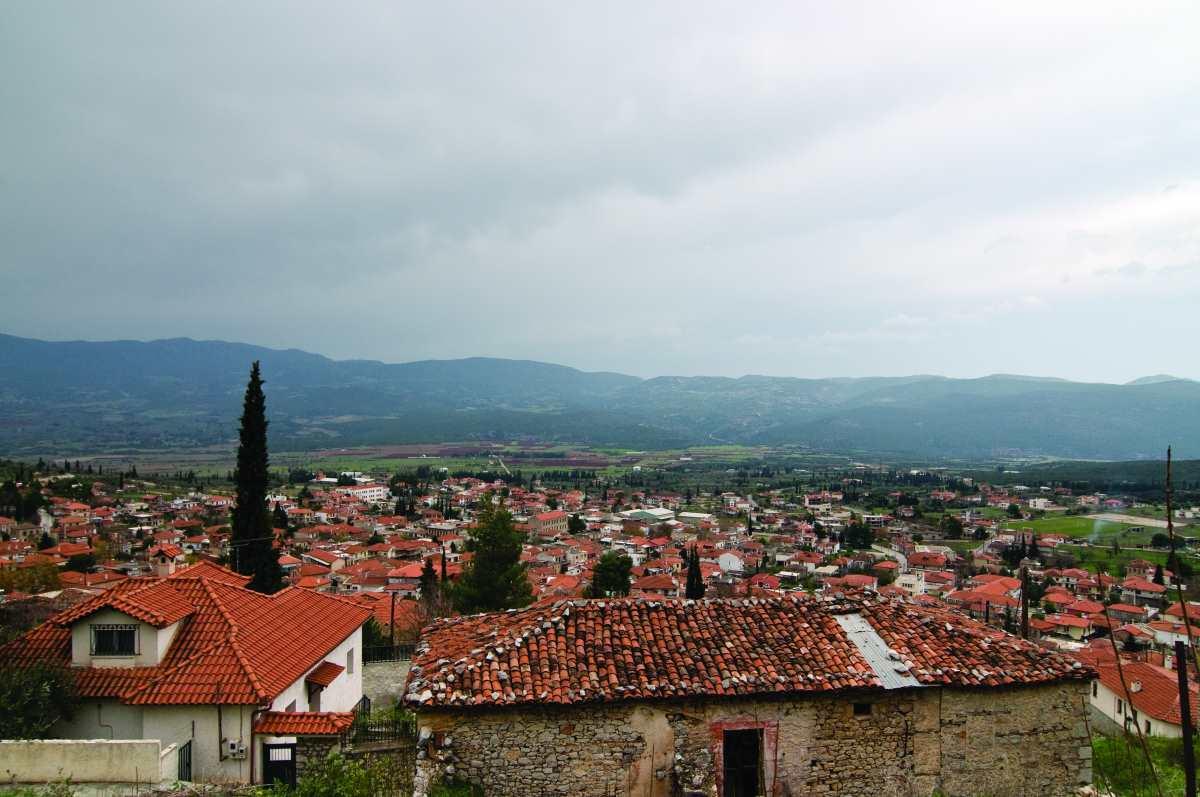 Αμφίκλεια, Παρνασσός