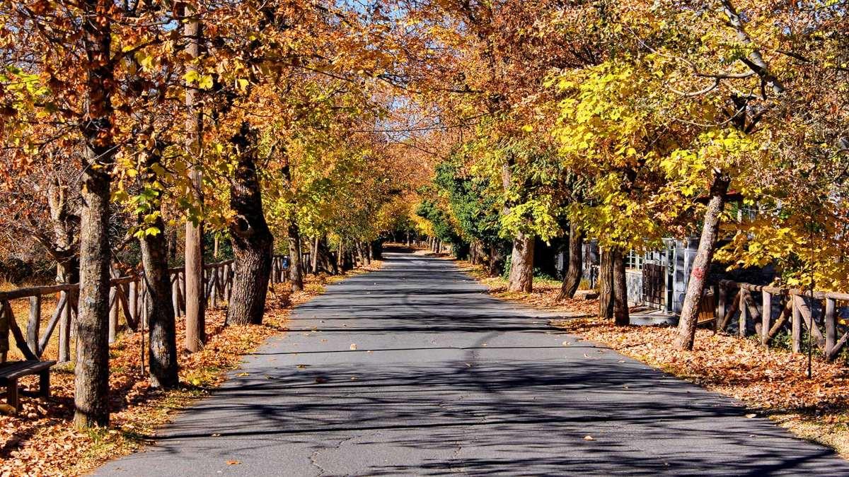 Δρόμος της αγάπης Βυτίνα με φθινοπωρινά χρώματα