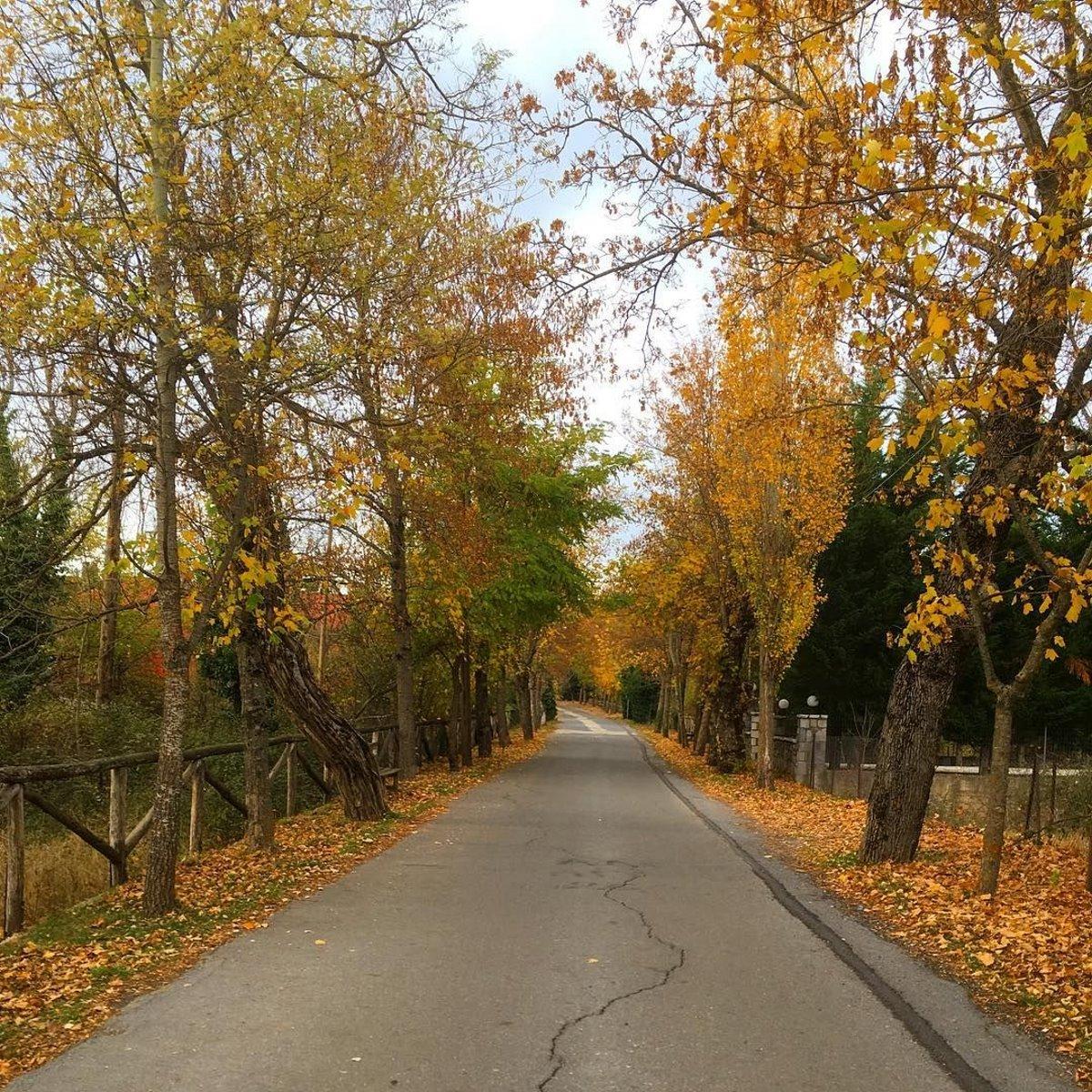 Δρόμος της αγάπης Βυτίνα 2 ώρες από την Αθήνα