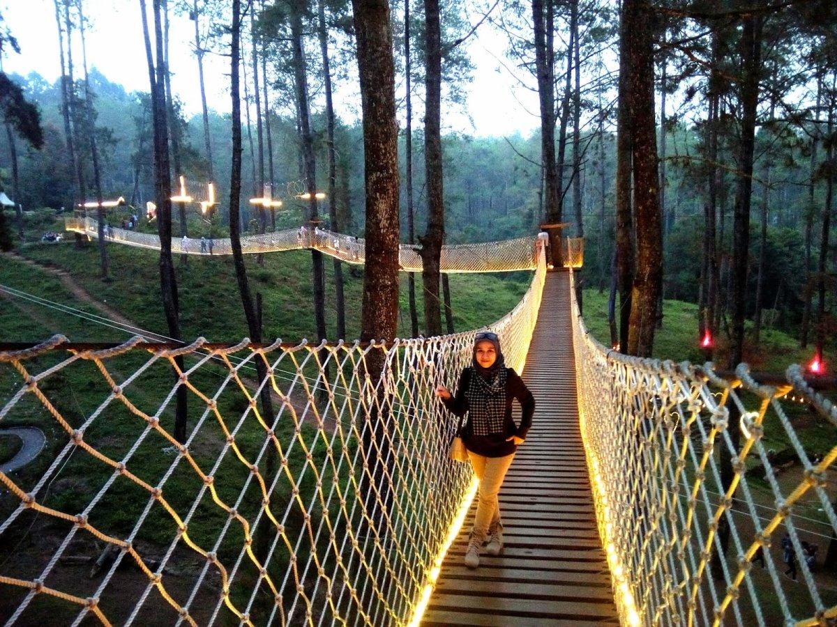 Ινδονησία φωτιζόμενη γέφυρα στο δάσος Orchid Forest τουρίστρια περπατά στη γέφυρα