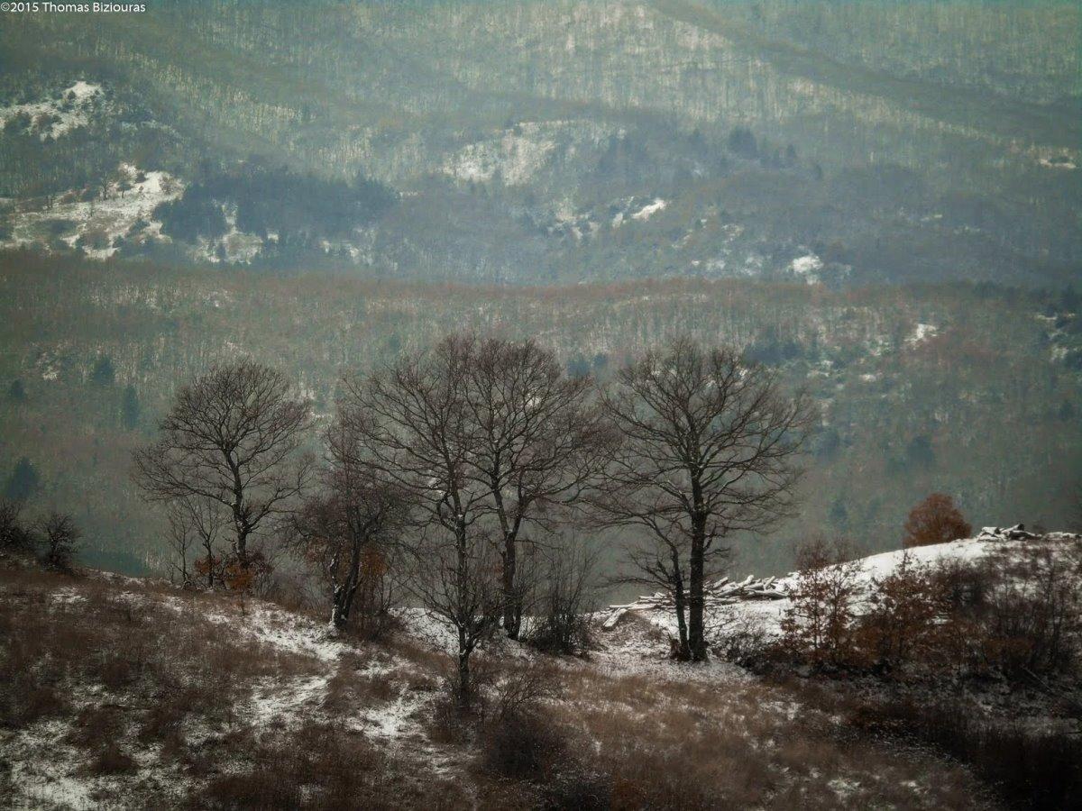 Η Κρανιά στα Γρεβενά υπέροχη φύση και πράσινο αλλά και ξενώνα