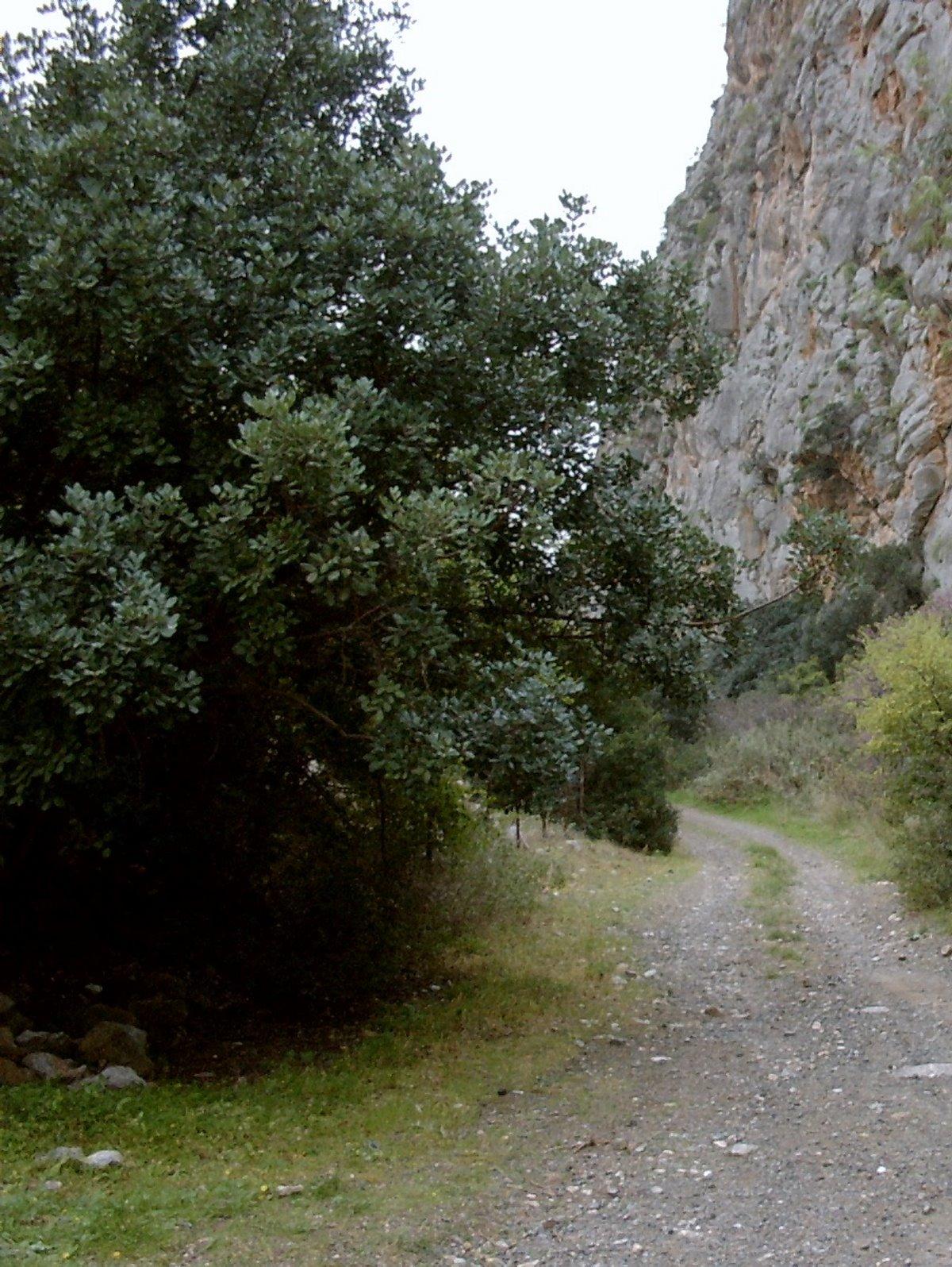 Μυστικές στάσεις Ναύπλιο Φαράγγι Καταφύκι Μονοπάτι Περσεφόνης