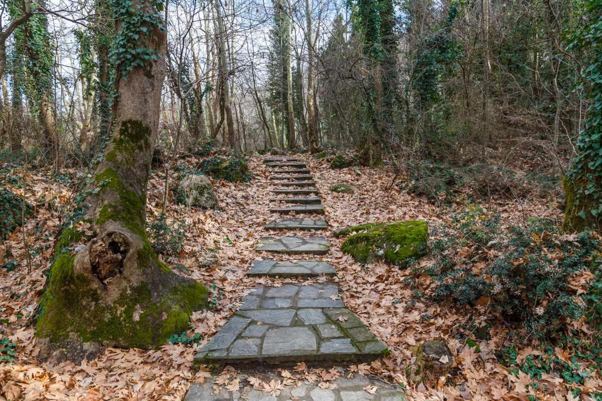 Βόλτα στο Πάρκο Αγίου Νικολάου