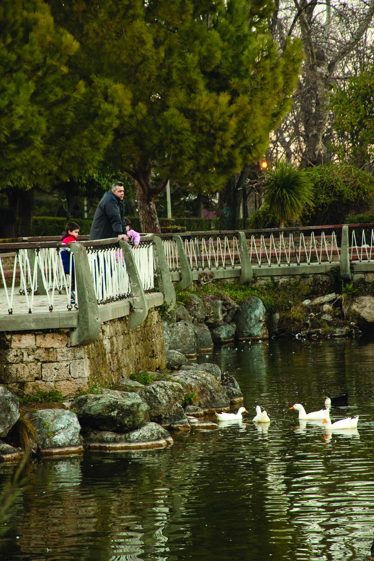 Πάρκο Αγίου Νικολάου