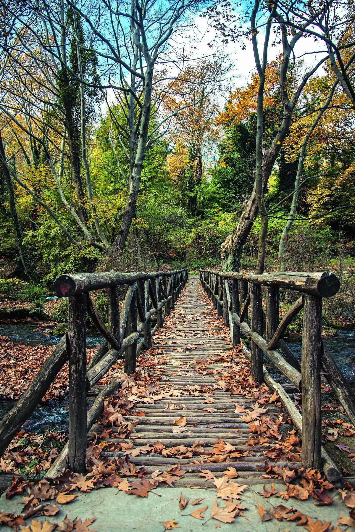 Γέφυρα ξύλινη- Πάρκο Αγίου Νικολάου, Νάουσα