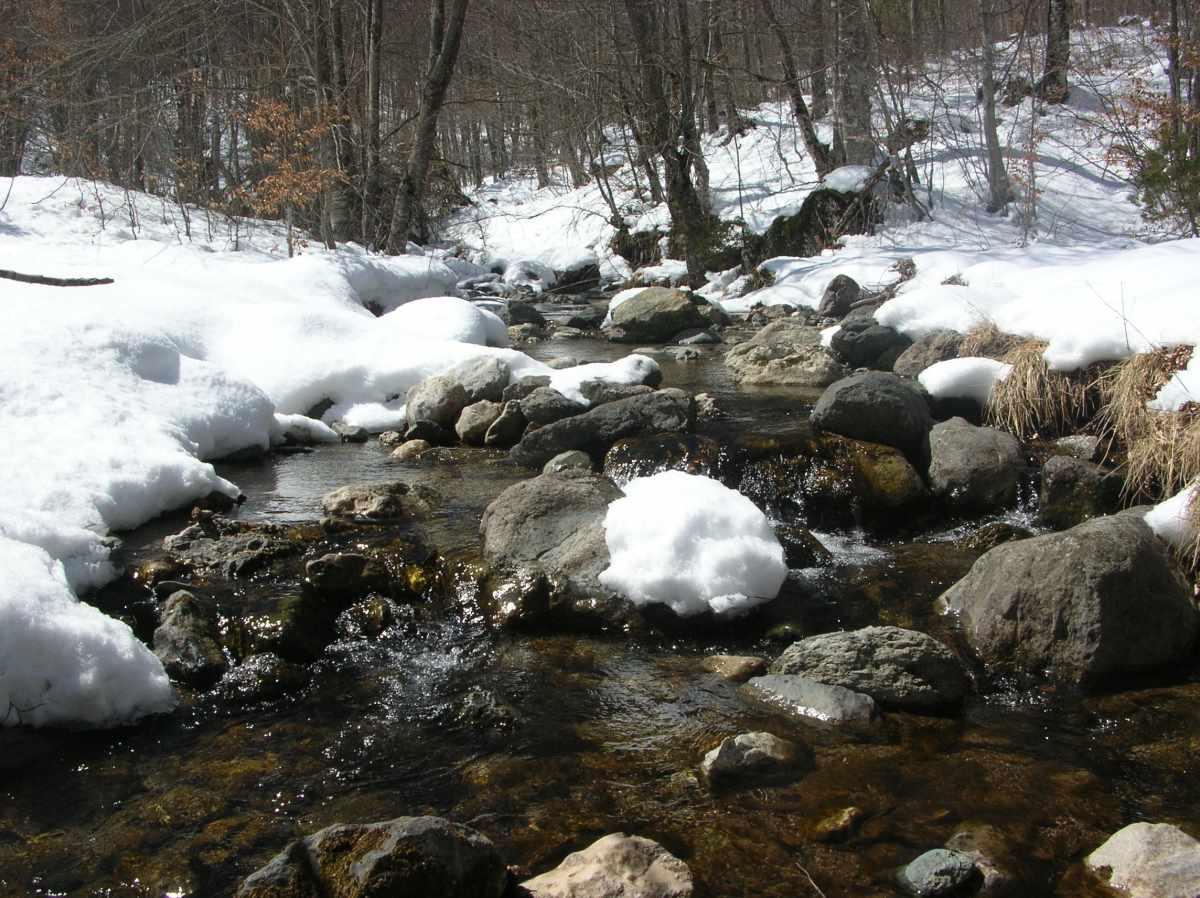 Πάρκο Αγίου Νικολάου, χειμώνας