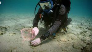 Η αρχαιότερη βυθισμένη πόλη του κόσμου βρίσκεται στην Ελλάδα! (video)
