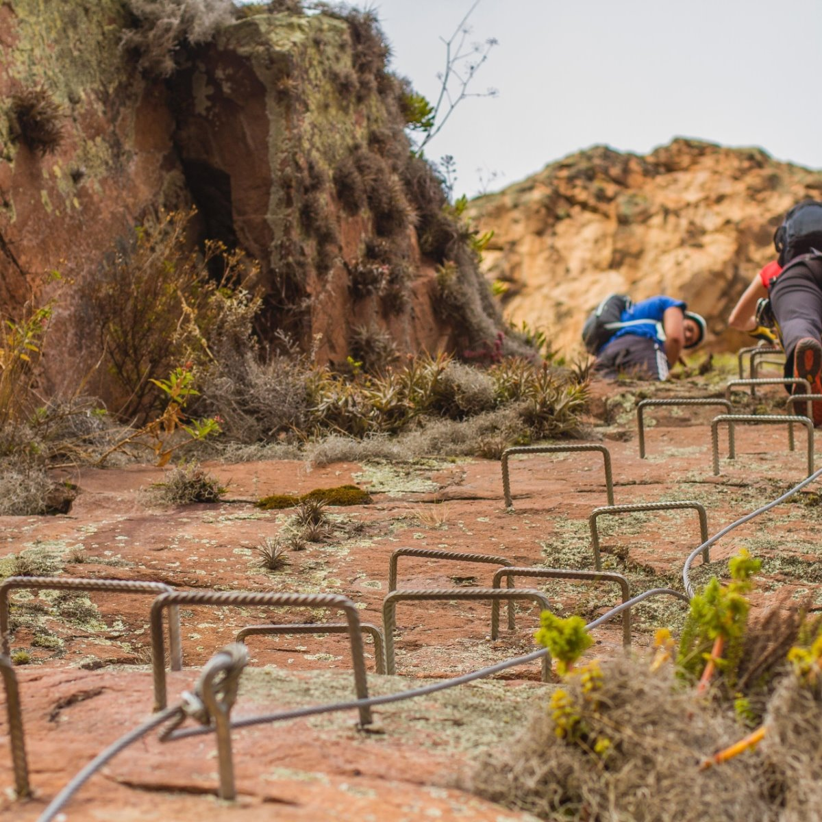 Skylodge ξενοδοχείο Περού κρέμεται στο κενό ανάβαση από σκαλοπάτια