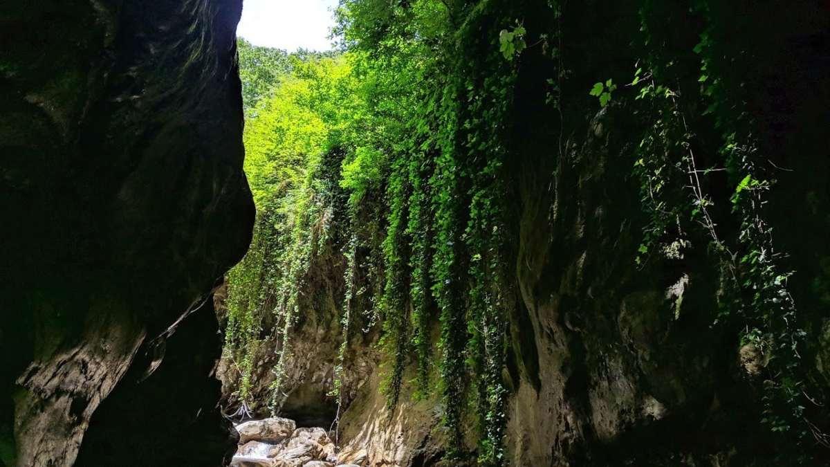 Τόρνος Ευρυτανία ορεινό χωριό δάσος