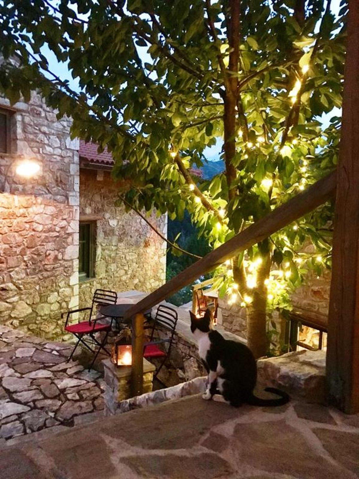 Τζίτζινα χωριό Λακωνίας με τον ξενώνα Πρυτανείο