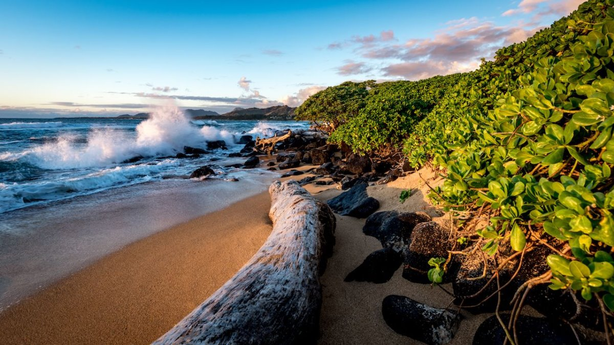 Παραλία, Kauai Χαβάη