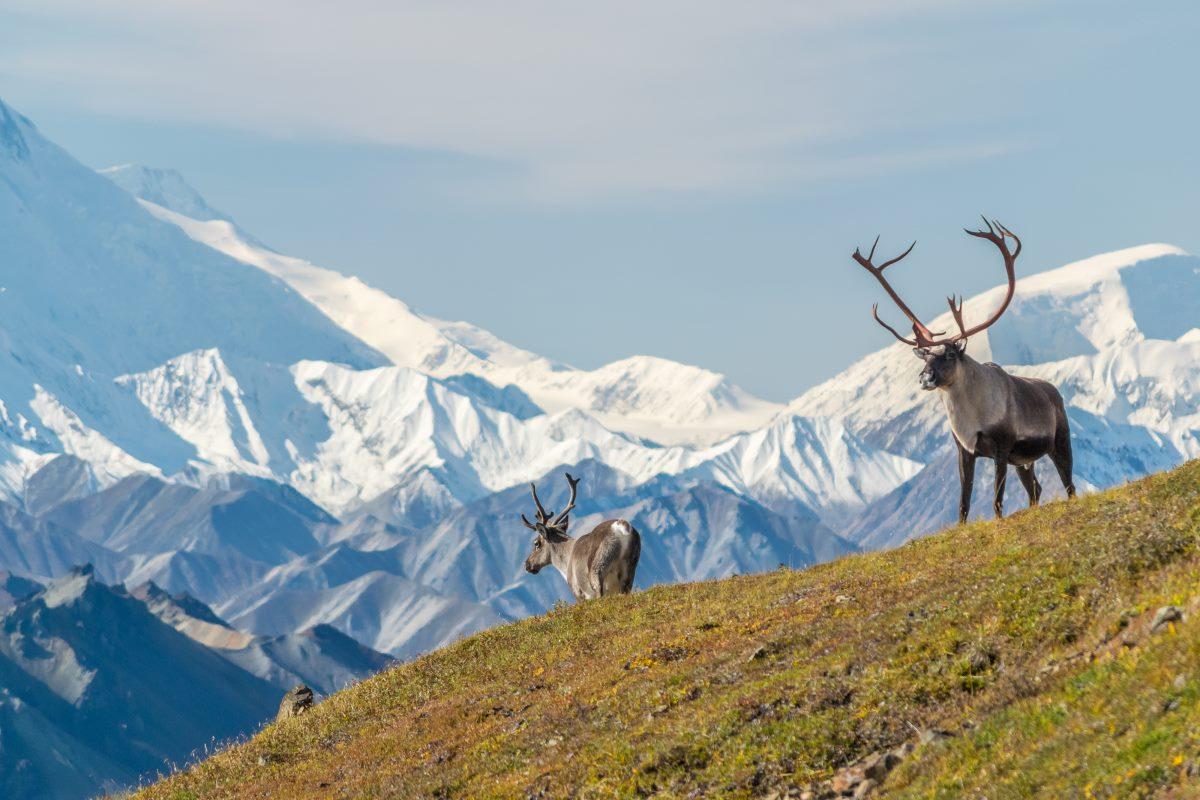 Όρος McKinley, Αλάσκα, ΗΠΑ