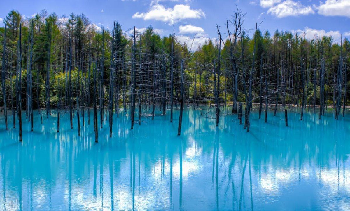 Blue Pond Λίμνη Ιαπωνία σε μπλε χρώμα