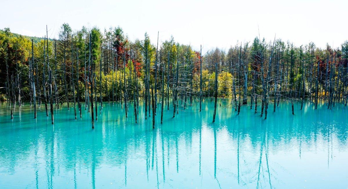 Blue Pond Λίμνη Ιαπωνία σε τιρκουαζ ανάλογα με το φως