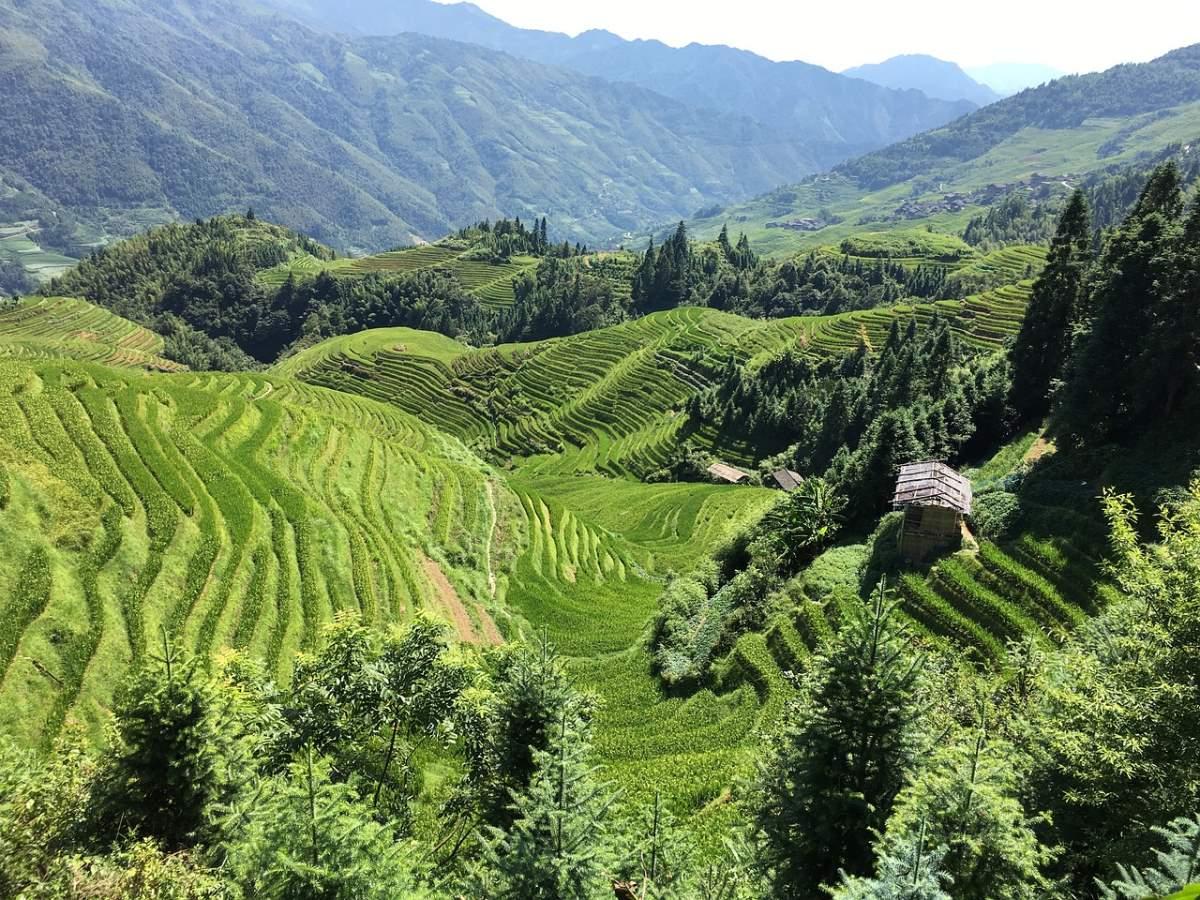 Το καταπράσινο τοπίο στο Γκουιλίν, Κίνα