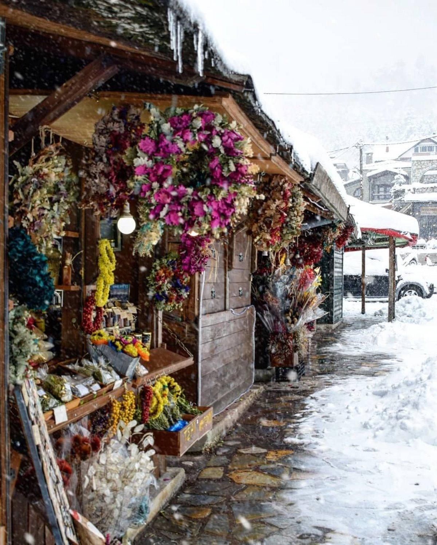 top χειμερινοί προορισμοί ελάτη στα χιόνια