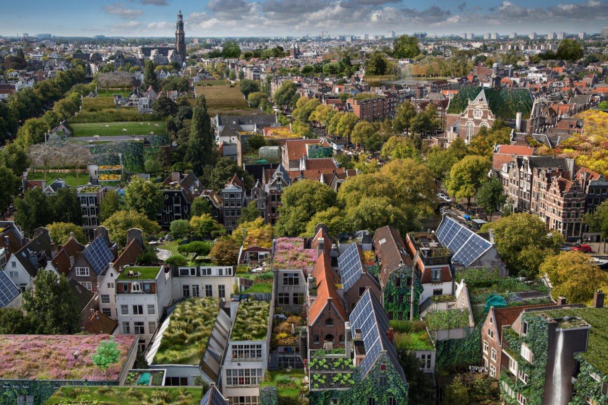 Πράσινες ταράτσες σε γειτονιά με κτήρια στο Άμστερνταμ