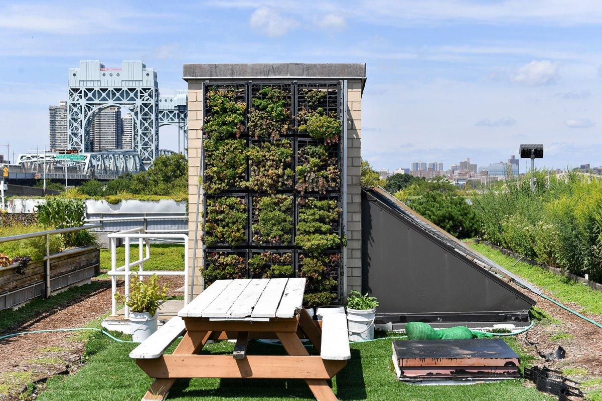 Πράσινες ταράτσες στη Νέα Υόρκη με κάθετο αστικό κήπο