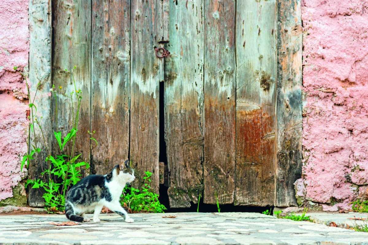 Συνοικία Χάρμαινα, παλιά ξύλινη πόρτα