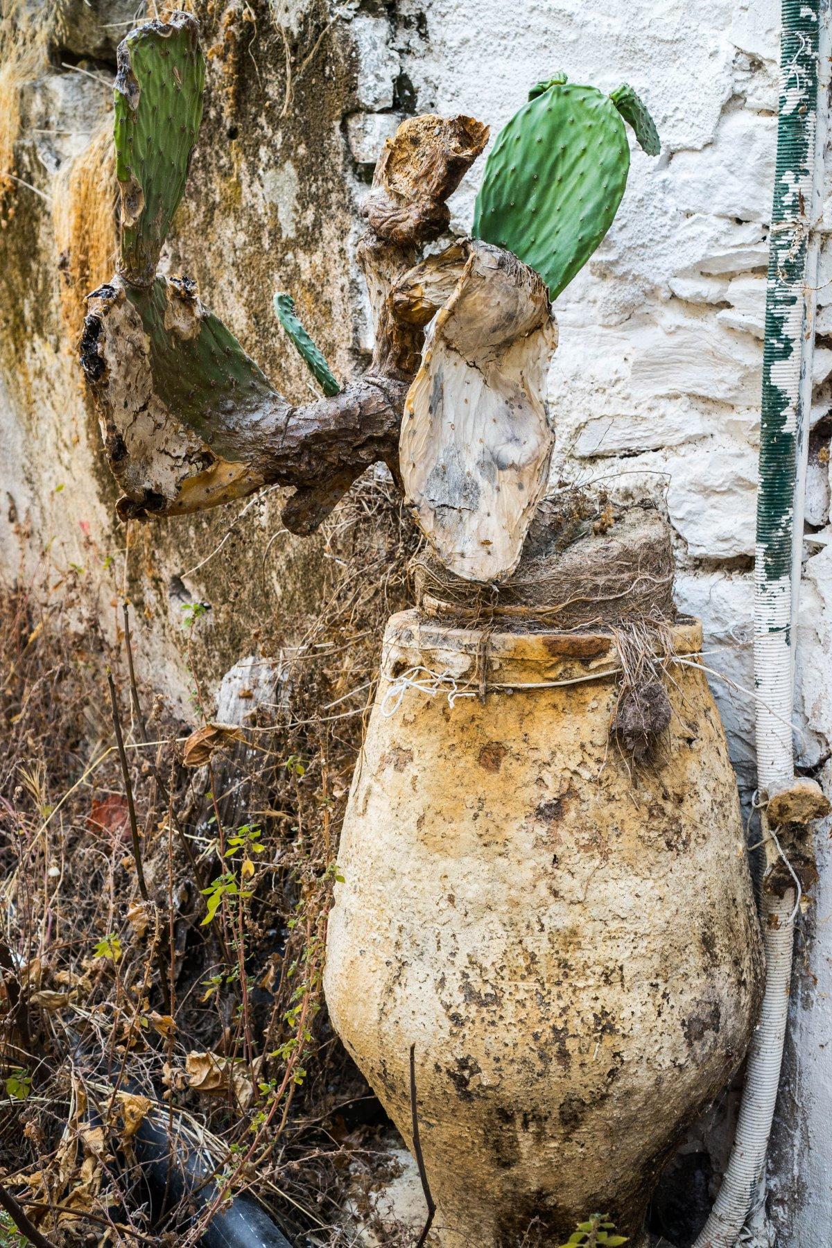 Χαρακτηριστικές εικόνες εγκατάλειψης στο Καλάμι, Κρήτη