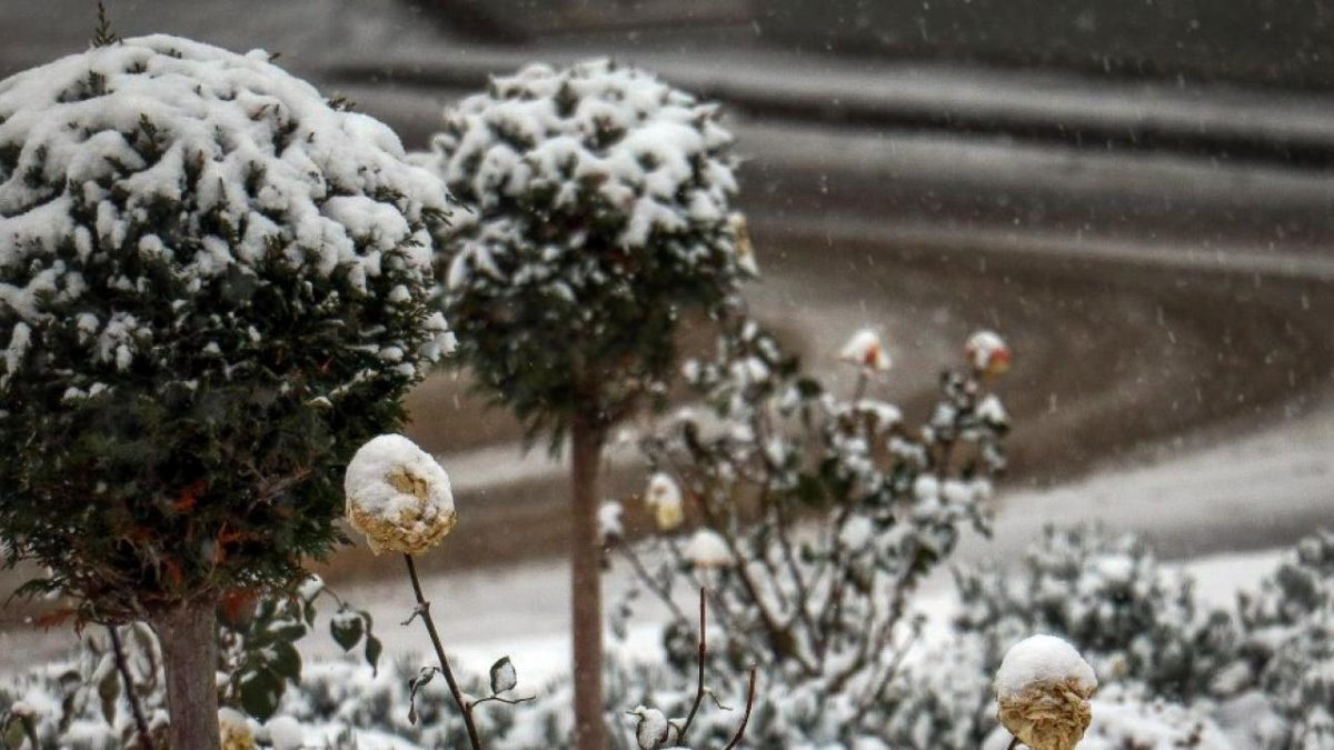 Νευροκόπι Σιβηρία χιόνια