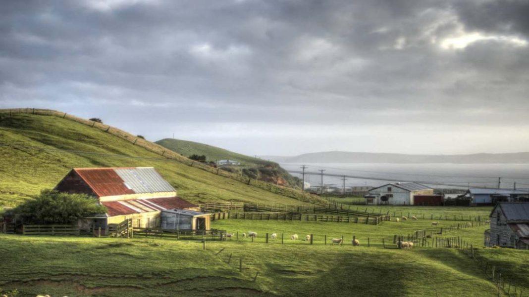 Νησιά Τσατάμ Νέα Ζηλανδία