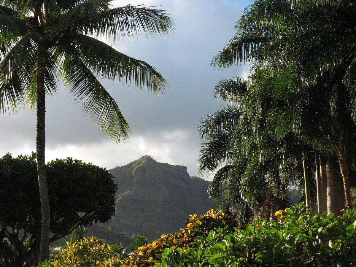 Στην ενδοχώρα του νησιού, Kauai Χαβάη