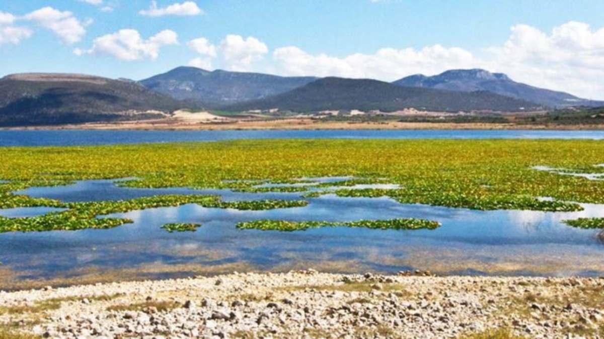 Παραλίμνη δίπλα στην Υλίκη φαινόμενο υπερχείλισης