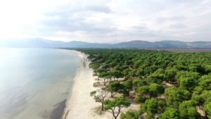 Οι 4 μεγαλύτερες παραλίες της Αττικής για να κάνετε τις βουτιές σας… με άνεση!
