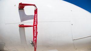 CNN travel: Είδος σφήκας μπορεί να… καταρρίψει αεροπλάνο! Δείτε πώς αλλά και όλα όσα αποκαλύπτει η σχετική μελέτη
