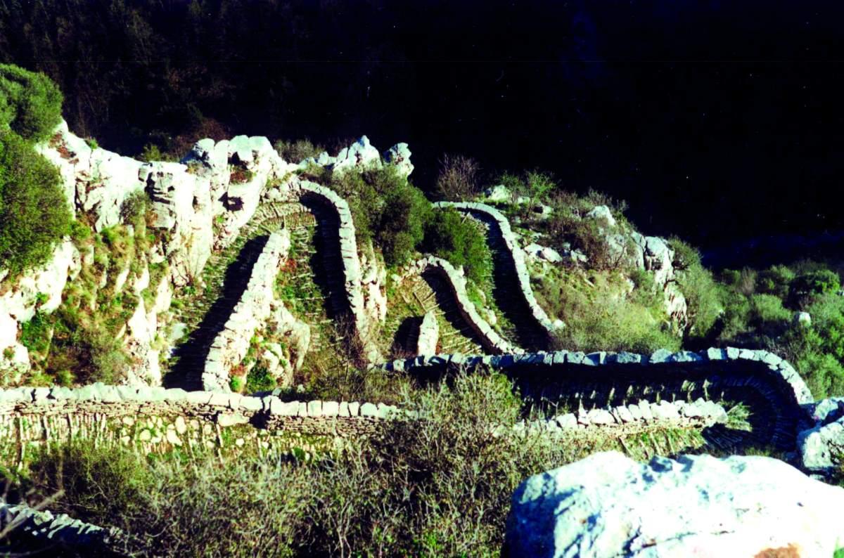 Σκάλα Βραδέτου, Ζαγόρι