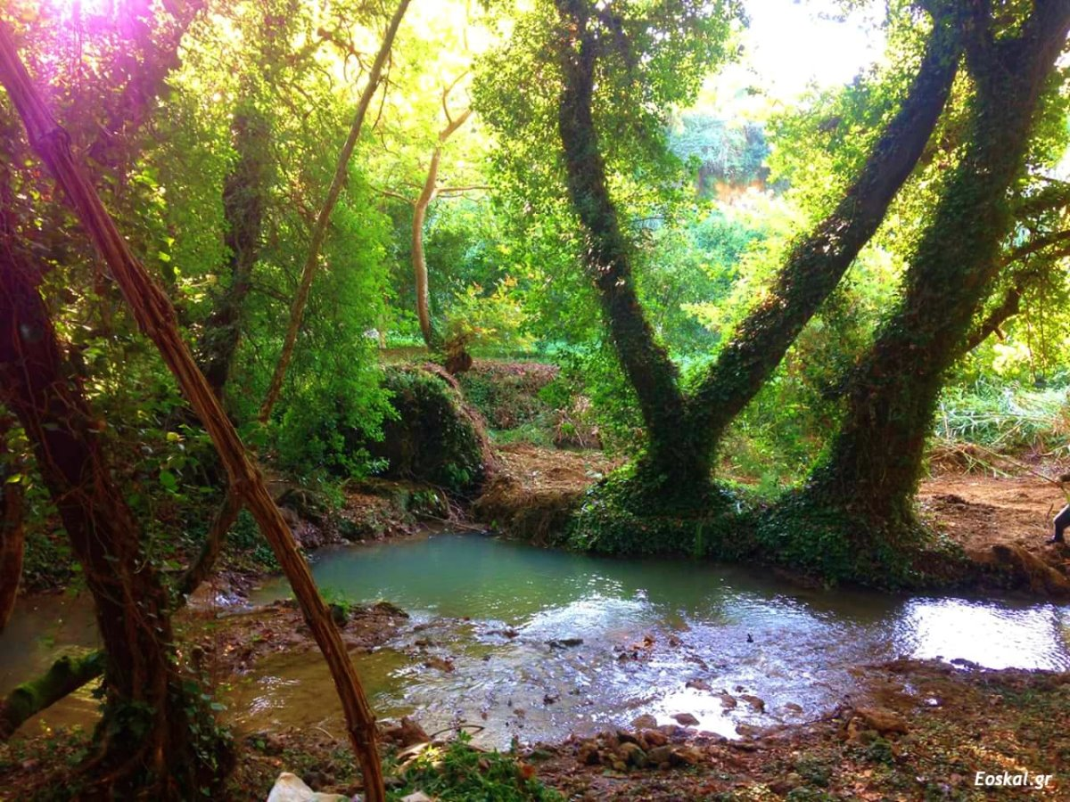 Στενωσιά Μεσσηνία χωριό με όμορφους καταρράκτες που δημιουργούν λιμνούλες