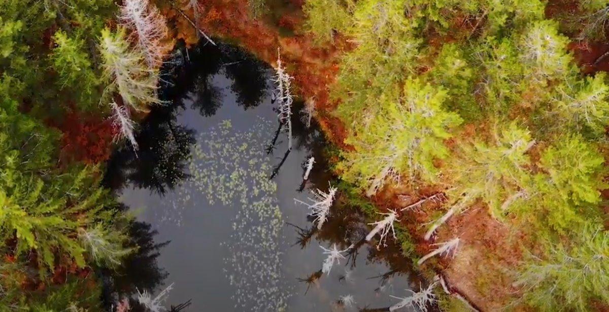 Πανοραμική λήψη από τη λίμνη Ζορίκα στο Ζαγόρι