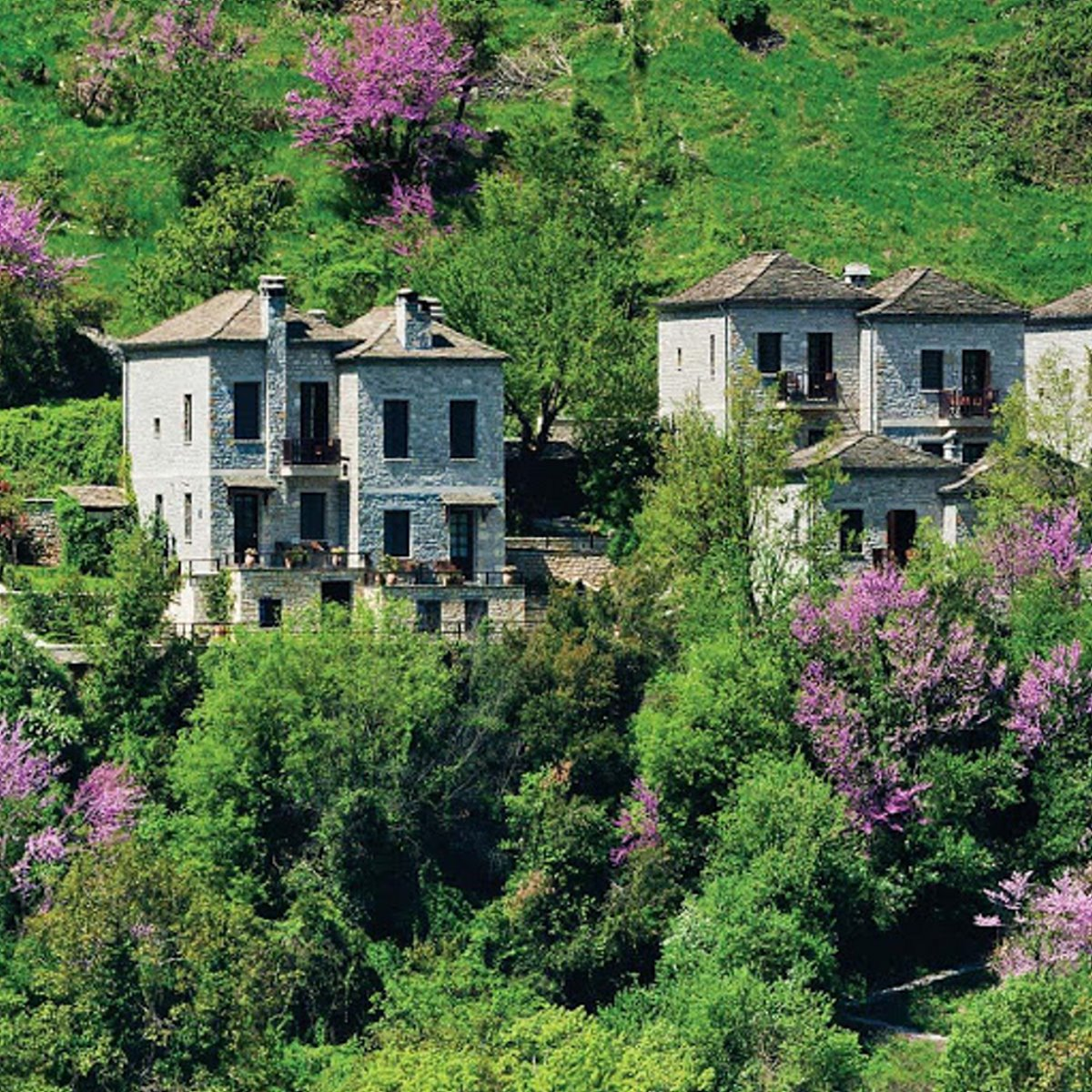 Aristi Mountain Resort μέσα στο πράσινο