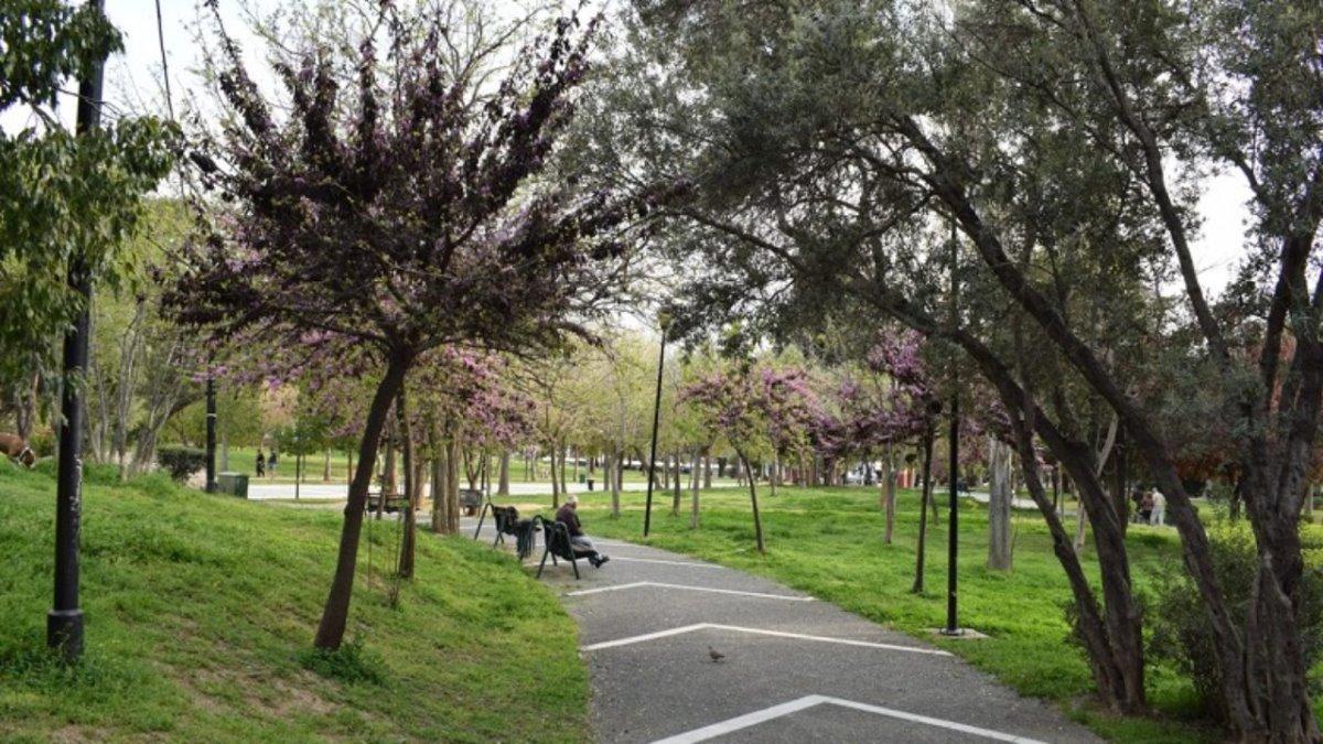 Άλσος Αιγάλεω Μπαρουτάδικο ανθισμένα δέντρα