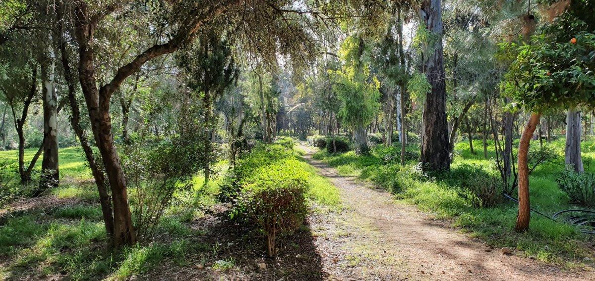 περπάτημα στο Άλσος Αιγάλεω Μπαρουτάδικο
