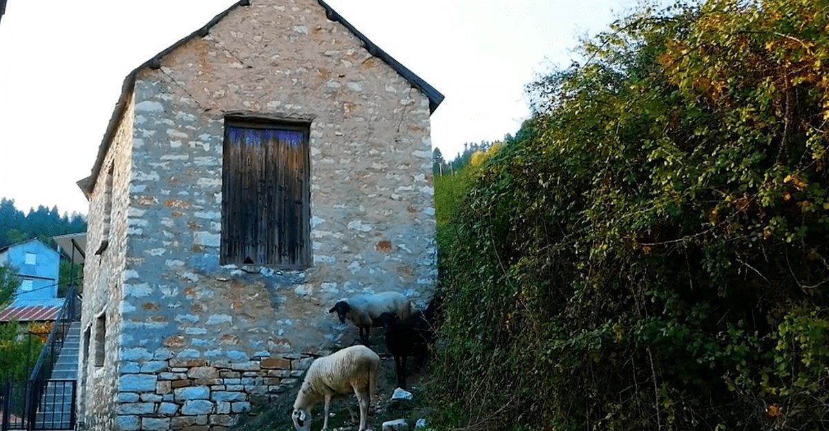 Συγγρέλος Ευρυτανία παραδοσιακός οικισμός με πέτρινα σπίτια και πρόβατα