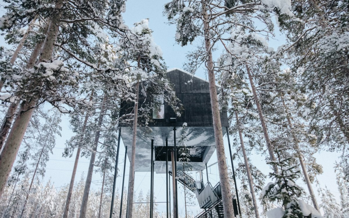 Tree Hotel, Σουηδία πάνω στα χιονισμένα δέντρα