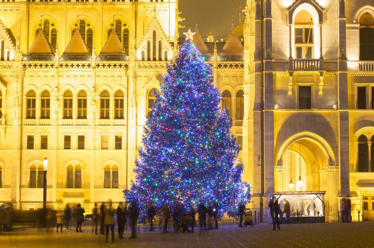 χριστουγεννιάτικο δέντρο Ουγγαρία