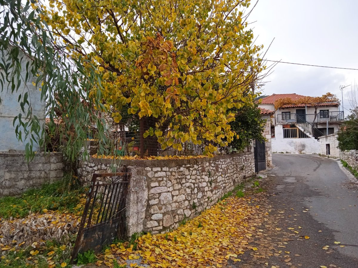 Σπίτια καλοδιατηρημένα στο χωριό Χορεύτρα Μεσσηνίας