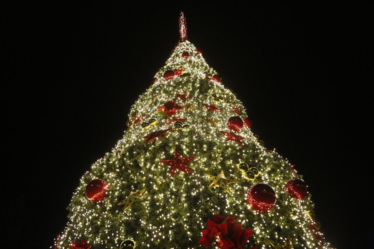 Χριστουγεννιάτικο δέντρο αθήνα 2015