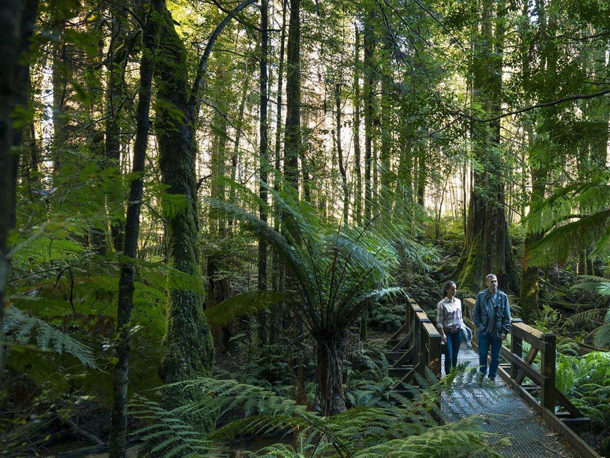 Εθνικό Πάρκο Yarra Ranges, Αυστραλία