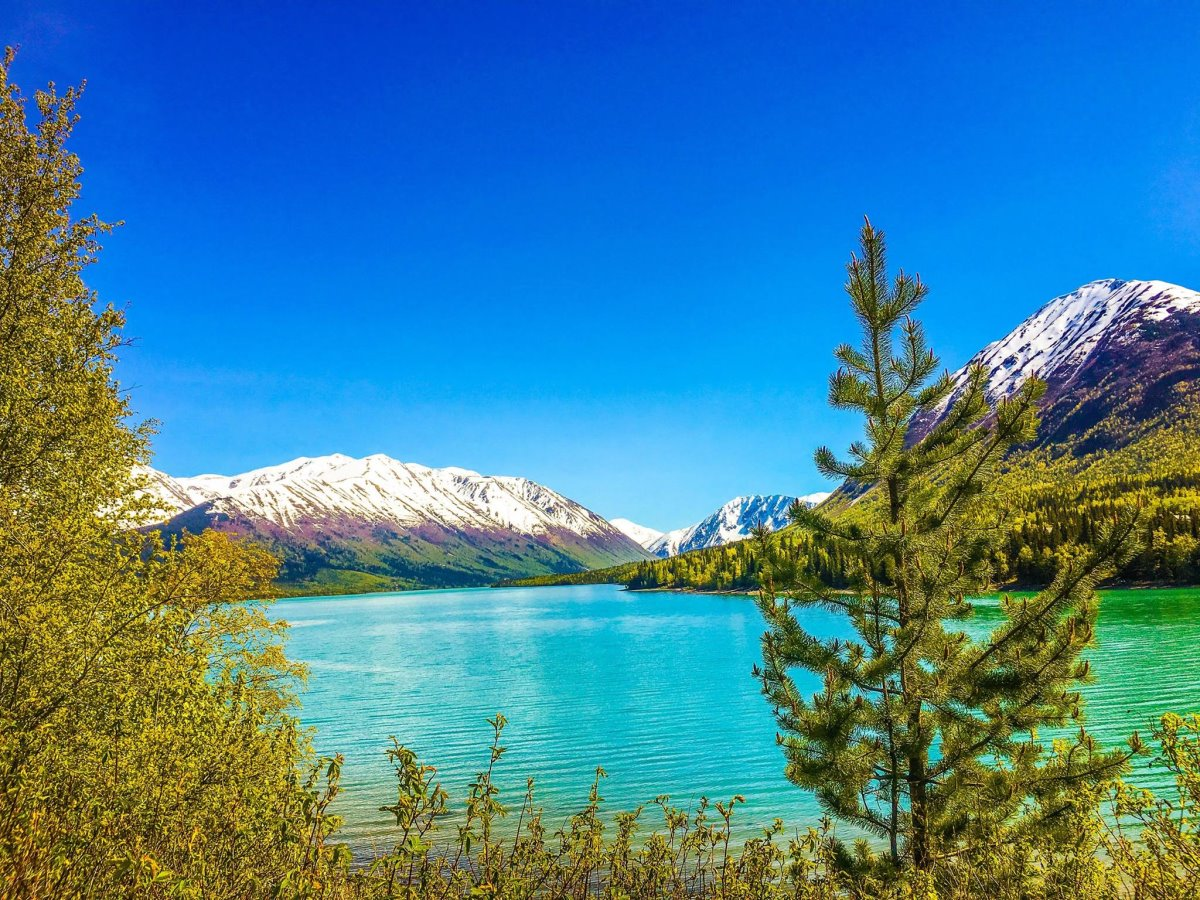 υπέροχες λίμνες το καλοκαίρι στην αλάσκα
