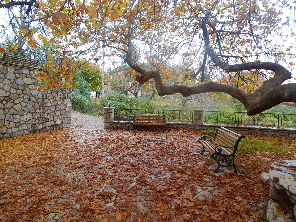 Αρτορίνα Φωκίδας το φθινόπωρο