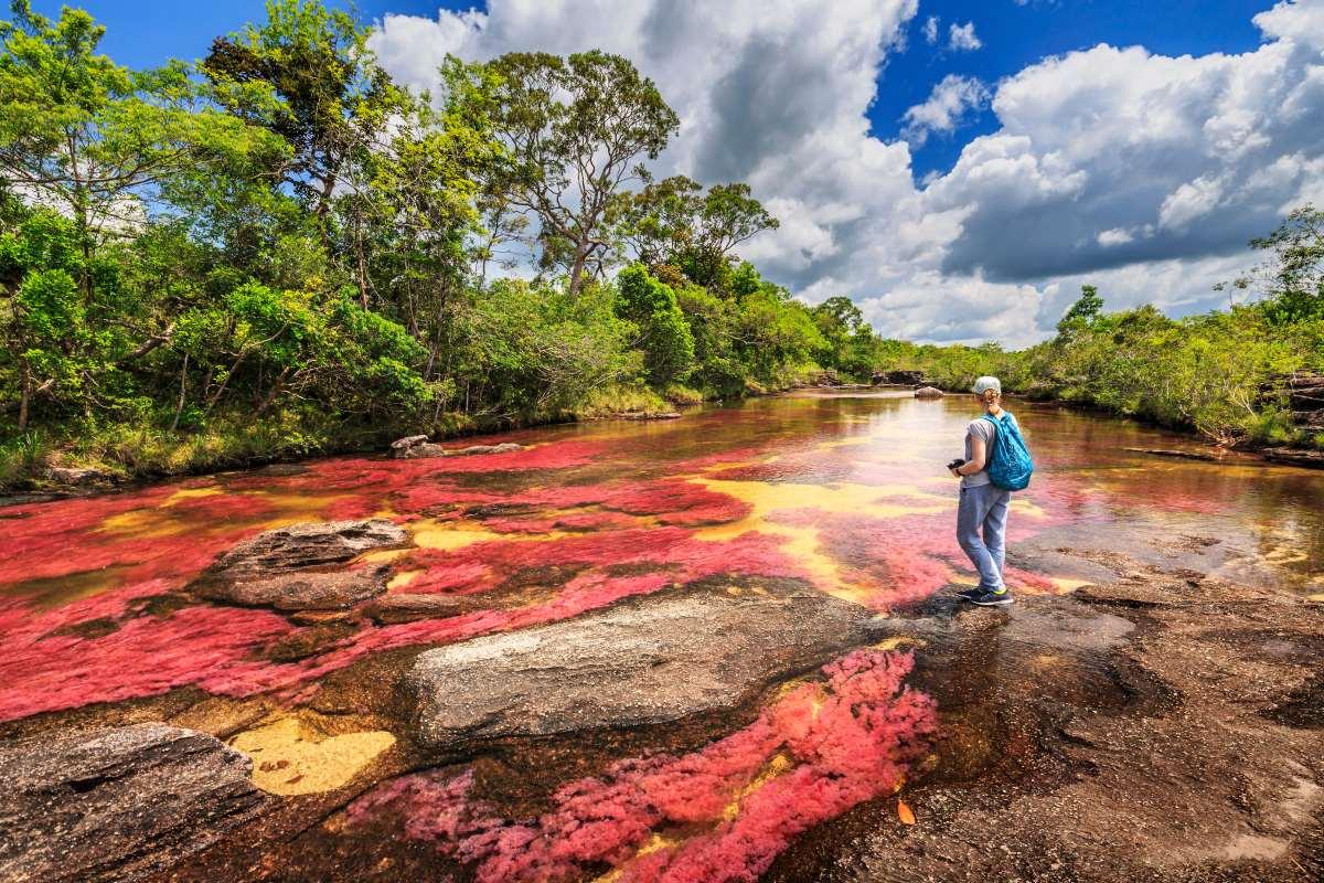ποταμός  Cano Cristales  στην Κολομβία