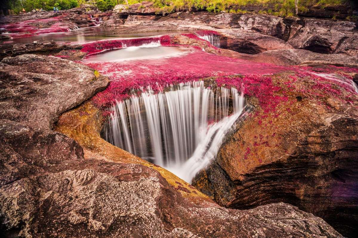 καταρράκτης του ποταμού ποταμός  Cano Cristales  στην Κολομβία
