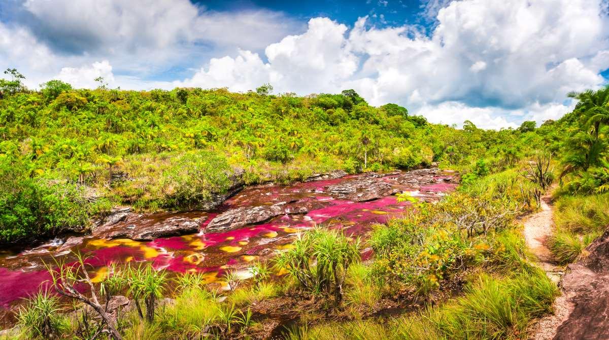 Ο ποταμός- ουράνιο τόξο   Cano Cristales  στην Κολομβία