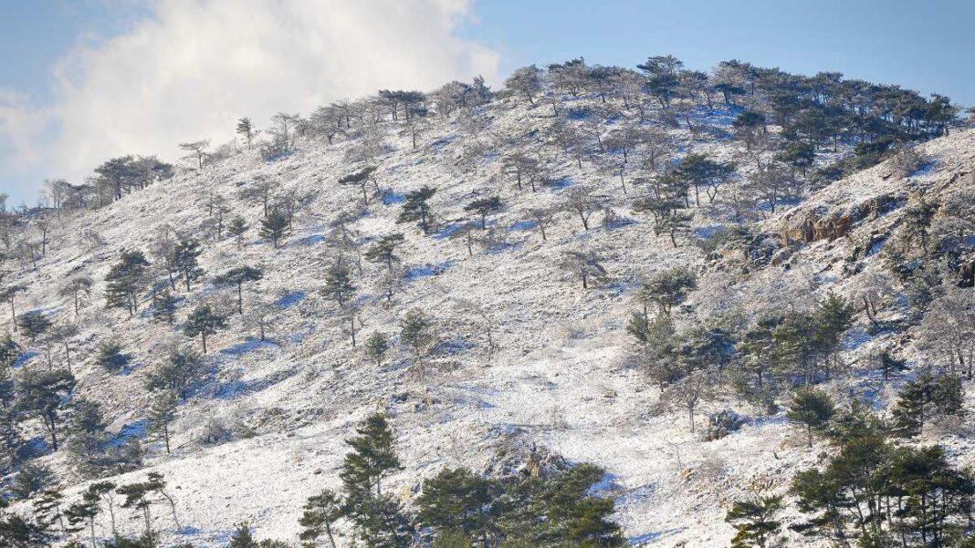 Χιόνια στη Χίο