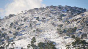Χιόνια στη Χίο: Δείτε υπέροχα πλάνα από ψηλά στα χιονισμένα χωριά του νησιού!